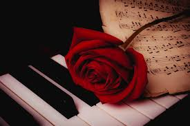 piano.with.rose